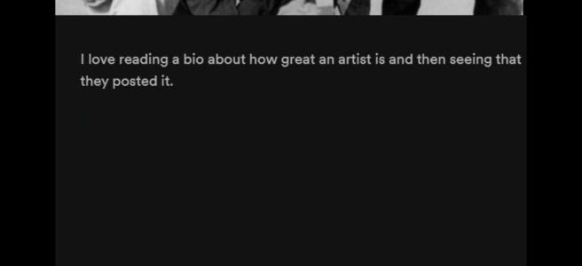 Beste Band und Künstler Biografien in Musik Streaming Portalen Spotify Amazon Google Apple Music Deezer Vorschau